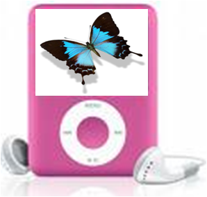 ipodbutterfly